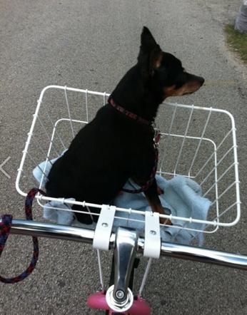 Biker Lou