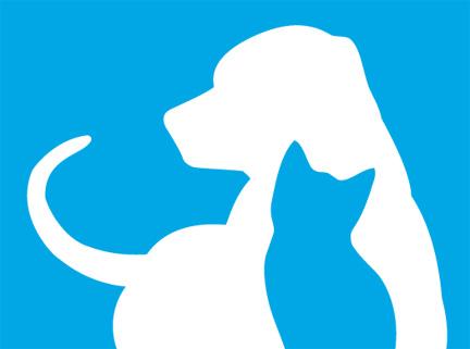 FFL_PMS_Logo_2012